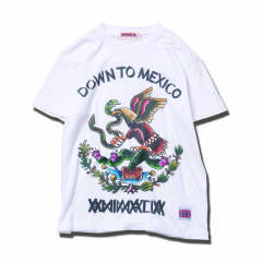DOWN TO-MEXICO
